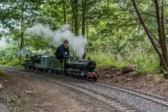 4701 in steam at Bramble Hill
