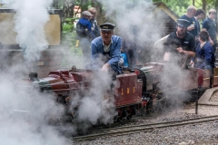 Double header in steam at Bramble Hill