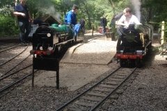 Locomotives in steam at Bramble Hill