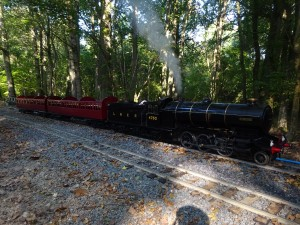 Photograph of Starlight in steam in the woodland at Ingfield Light Railway.